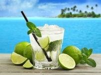 mojito cocktail and fresh ingredients in a tropical landscape
